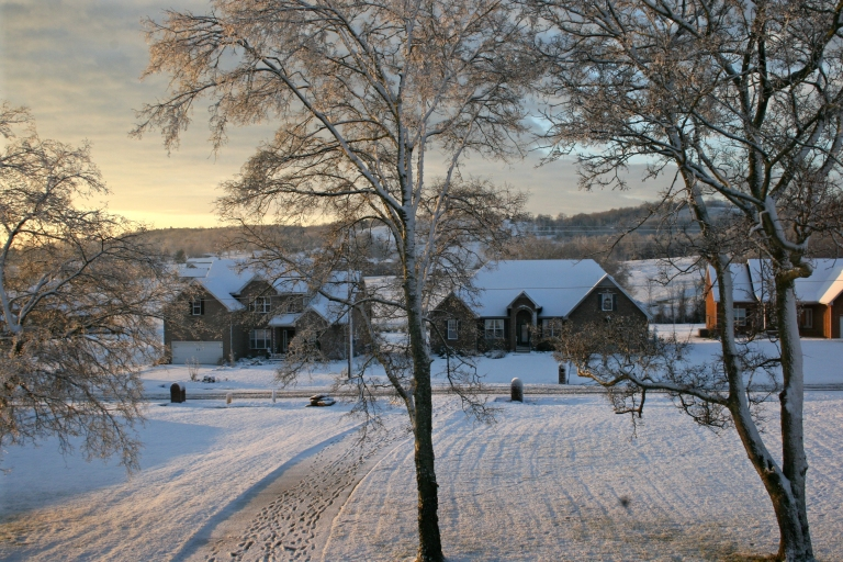 snow-the-morning-after-058